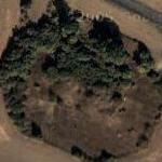 Overgrown bunker