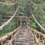 Iya Kazurabashi Bridge