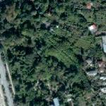 Sukhumi botanical garden
