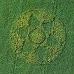 Flower shaped crop circle