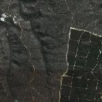 Belanglo State Forest (Google Maps)
