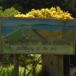 Welcome to Aramoana