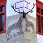 Stag mural with antler
