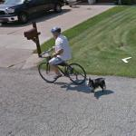 Bicyclist With A Dog