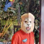 Employee with a lion mask