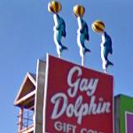 Gay Dolphin Gift Cove