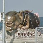 Giant octopus of Ariake