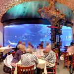 Aquarium in a restaurant