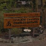 Welcome to Charles Darwin Research Station