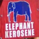 Elephant Kerosene