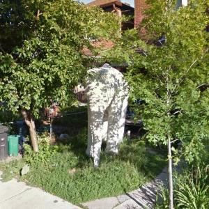 Elephant in the front yard (StreetView)