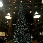 Christmas decorations in Disney's Wilderness Lodge (StreetView)