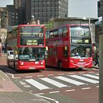 Red double decker buses