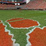Clemson Tiger paw on the 50 yard line