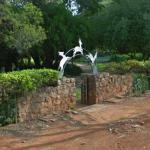 Springbok Park