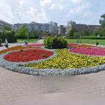 Flowers in Teplice
