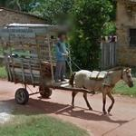 Horse drawn vehicle