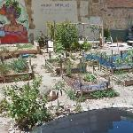 An urban farm in Palma