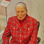 Rosa Parks wax figure