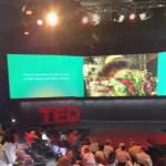 TEDGlobal Conference