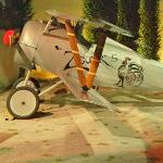 Nieuport 24bis Reproduction