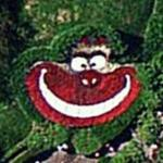 Cheshire Cat (Google Maps)
