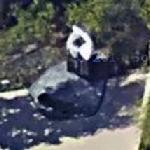 Cerritos Air Disaster Memorial (Google Maps)