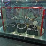 Wayne Gretzky's 802nd goal display