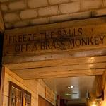 Brass monkey (colloquialism)