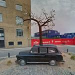 London Taxi Sprouting a Tree