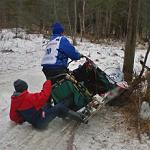 Dog sled race crash