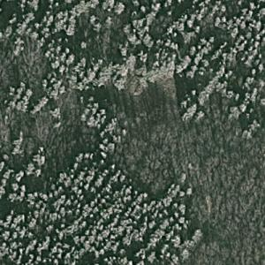 1979 Dniprodzerzhynsk mid-air collision memorial (Google Maps)