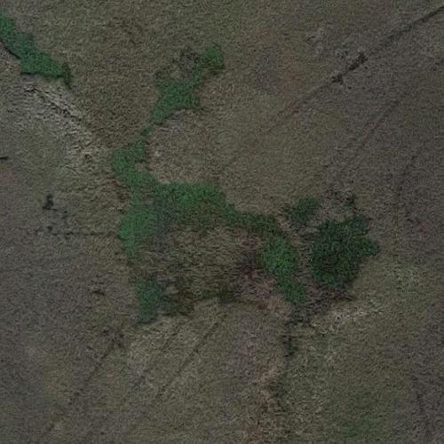 Google earth virtual globe trotting celebrity homes nashville