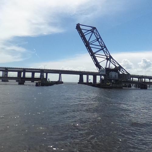 Swamp Bridge  Asset Store