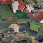 Salt Ponds (Google Maps)