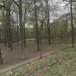 Shiloh Indian Mounds Site