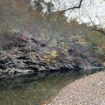 Wissahickon Creek