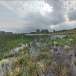 Horicon National Wildlife Refuge
