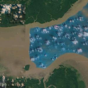 Mouth of the Amazon River (Google Maps)