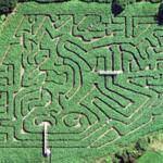 Cawthorne maze