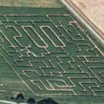 1200 maze (Google Maps)