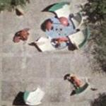 'Dropped Bowl with Scattered Slices and Peels' by Claes Oldenburg (Google Maps)