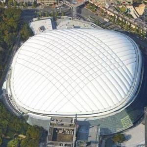 Tokyo Dome (Google Maps)