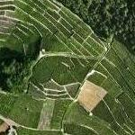 Aigle Winery (Google Maps)