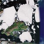 Icebergs!!!!!