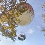 Channel 6 Zooballoon (StreetView)