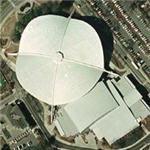 Stegeman Coliseum