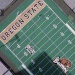 Reser Stadium (Google Maps)