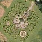 Green man maze (Google Maps)