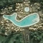 Whale shaped pool
